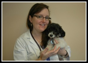 Maggie Mae with Megan Duffy, DVM  Katonah Bedford Veterinary Center, New York