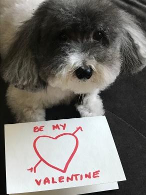 Maggie Mae Valentine